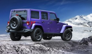 jeep wrangler backcountry